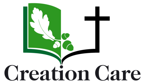 CreationCareLogo Green RGB