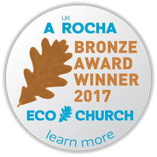 ec award buttons 2017 medium bronze